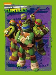 portada_las-tortugas-ninja-caja-metalica_las-tortugas-ninja_201506041648.jpg
