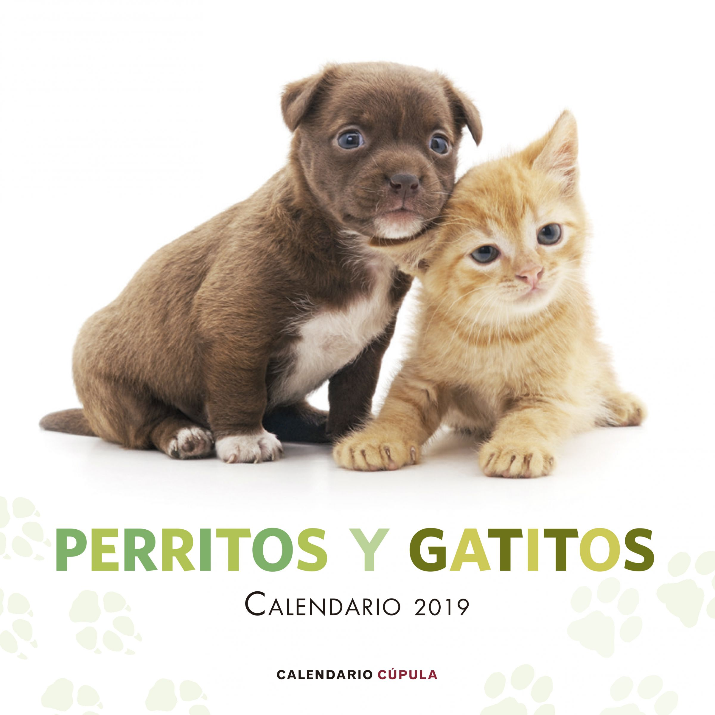 Calendario Perritos y gatitos 2019 | Planeta de Libros