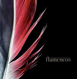 flamencos_9788497858793.jpg